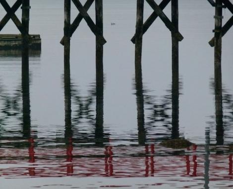 750 wide dock