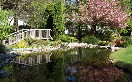 This image has an empty alt attribute; its file name is bc-pond.jpg